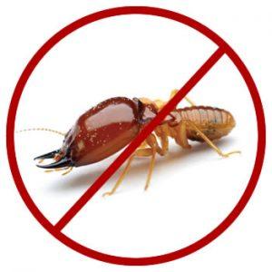 Anti Termite
